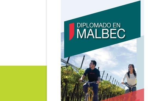 Diplomado en Malbec - Extensivo